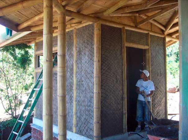 House Mud Walls